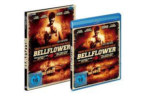 packshot_bellflower