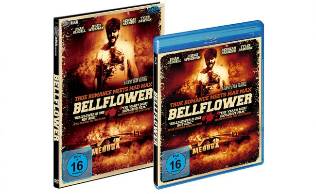 packshot_bellflower