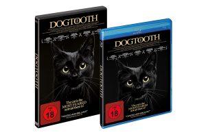 packshot_dogtooth