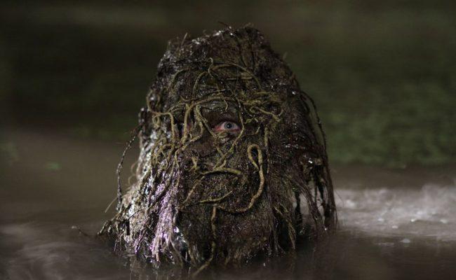 swamp-06