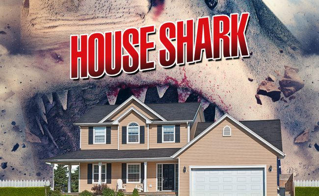 House Shark_feature