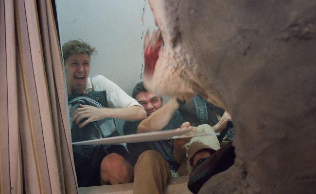 House Shark – Screencap (1)